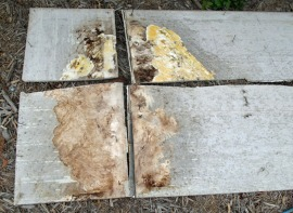 Degradation of Fiber Cement Panel